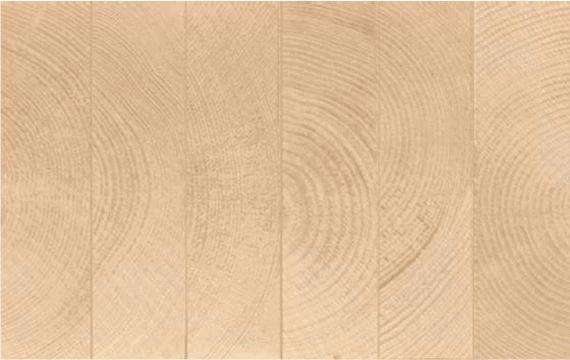 Drewno konstrukcyjne klejone BSH